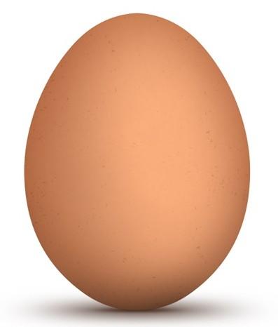 Brown-Egg