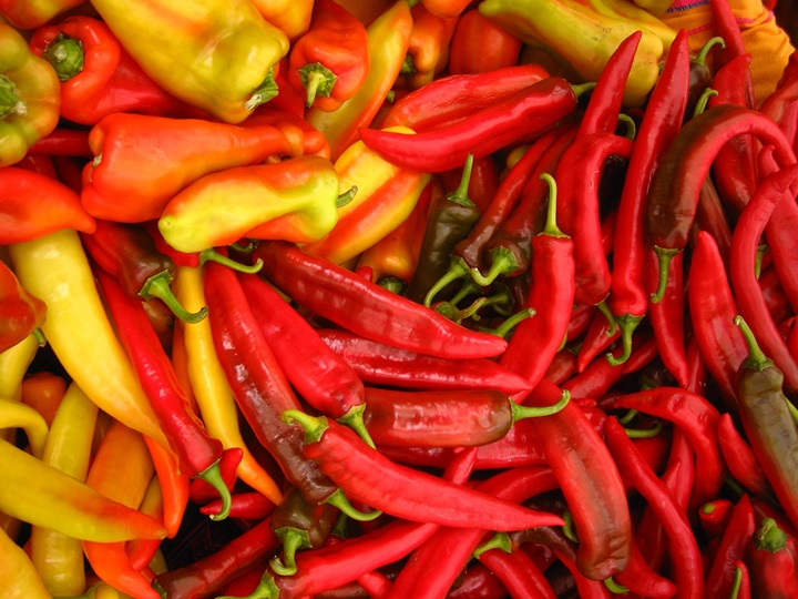 hot-peppers-by-IAN-RANSLEY-DESIGN-+-ILLUSTRATION