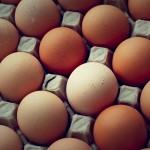 三天一顆蛋? 一天三顆蛋? 吃蛋的必勝法則,學會了常保家人健康!