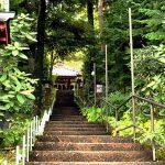 [日圓低水] 東京近郊登山遊  半日搞掂