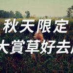 [秋天限定] 7大賞草好去處