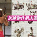 [健身狂Sally] 訓練動作肌肉圖解