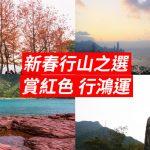 [新春行山之選] 賞紅色 行鴻運