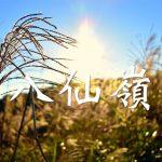 [JoyeeWalker行山系列] 4分鐘行完 賞・芒草山景《八仙嶺》