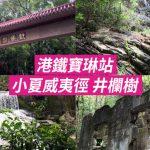[Let's go hiking] 港鐵寶琳站 小夏威夷徑 井欄樹