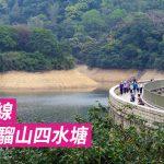 [香港山女] 一條路線 遊遍馬騮山四水塘 (九龍水塘群)