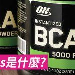 [Gymbeginner 健身入門] BCAAs是什麼?
